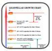 Legionellae Growth Chart