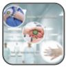 WH - Infection Prevention Brochure - L1001327 - 201310